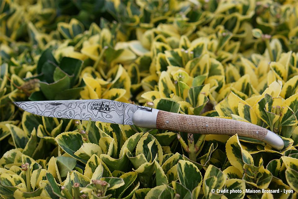 Faou chêne d'Aveyron – Damas carbone artisanal 140 couches . 557€