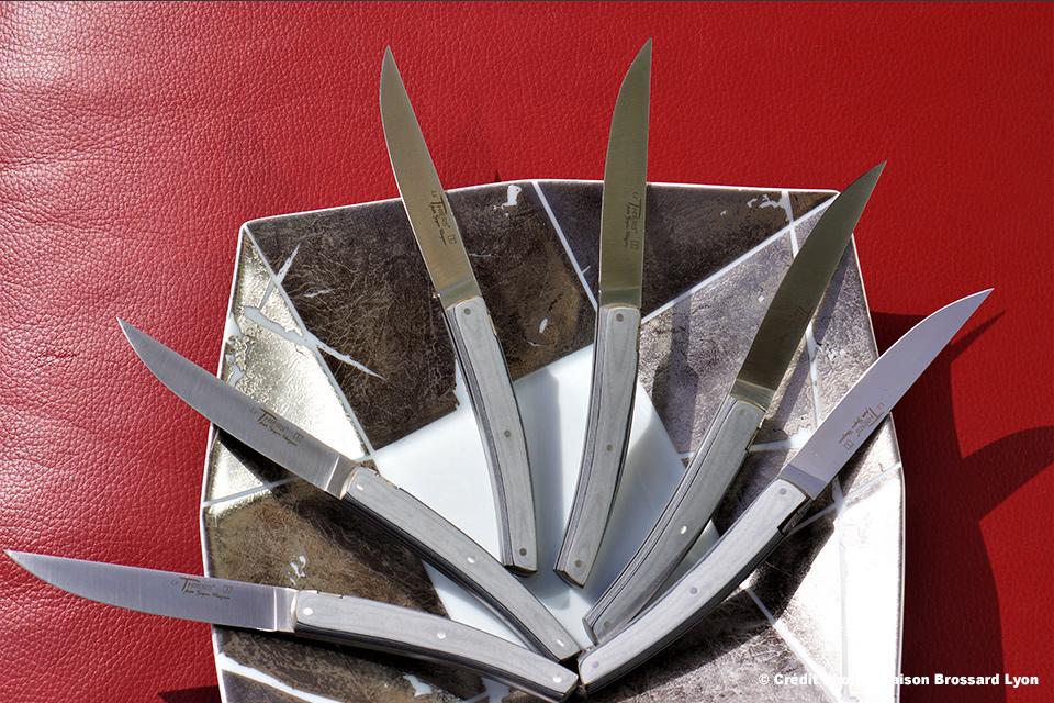 Couteaux de table Le Thiers par Goyon Chazeau Manche en paperstone (lave-vaisselle). 199€ les 6.